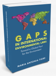 Gaps in International Environmental Law