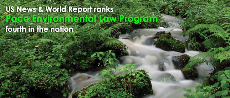 Pace Environmental Law Program ranked 4