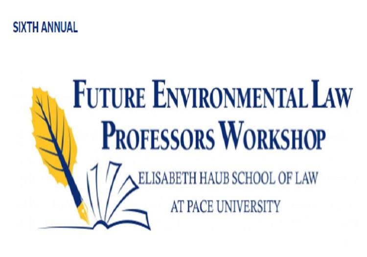 Future Environmental Professor Workshop