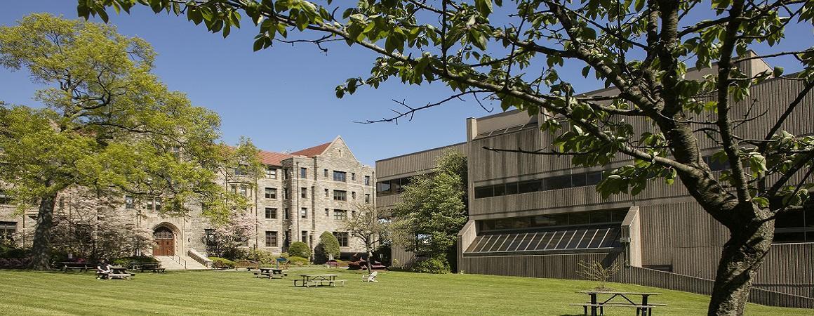 Elisabeth Haub School of Law campus photo